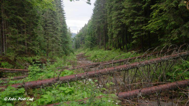 Ukraina. Stoh i źródła Białej Cisy