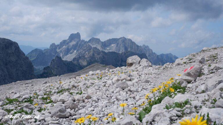 Alpy. Masyw Dachsteinu. Adamekhütte